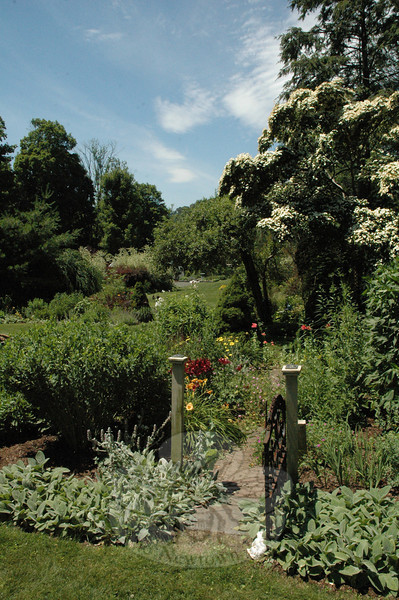 The expansive garden view looking westward in the rear yard at 59 Main Street, the home of the  Pessin and Craddock family.  (Gorosko photo)