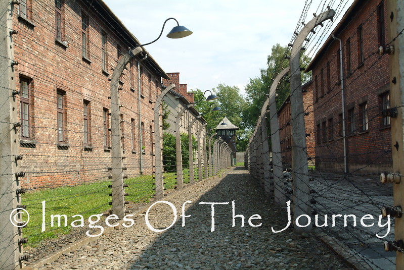 """Electric Fence in Auschwitz, Death-Camp. This is the central camp where the Nazis did """"field trials"""" on just how you go about murdering more than 6 million efficiently. BTW the poison gas was made by Bayer."""