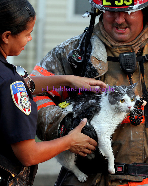 E.L. Hubbard photography<br /> A Fairfield firefighter hands over a cat to a Fairfield police officer after the cat was rescued from an apartment fire at the Oaks at Woodridge apartment complex in Fairfield Sunday, August 19, 2012.
