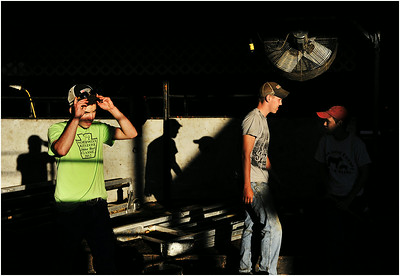 Dalton Marsteller, 18, left, of Saegertown, Pa., prepares beer cattle stalls at the Crawford County Fair with his friends Hayden Schmidt, 18, center, and Schmidt's brother Nolan Schmidt, 13, both of Conneautville, Pa., near Meadville, Pa., on Wednesday, Aug. 14, 2013.