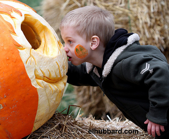 E.L. Hubbard photography<br /> Jaxon Payne, 3, from Seven Mile, gets nose to nose with a giant, carved pumpkin during Operation Pumpkin in downtown Hamilton Sunday, Oct. 7, 2012.