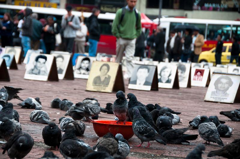 Con una exposición de más de 200 fotografías de personas desaparecidas la Asociación de Familiares de Detenidos Desaparecidos (Asfaddes) y el Movimiento de Víctimas de Crímenes del Estado (Movice) conmemoraron este 30 de agosto el Día Internacional del Detenido Desaparecido.