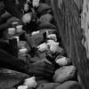 El muro de la memoria se llenó de rosas. En él se pueden ver los rostros de los 43 desaparecidos.
