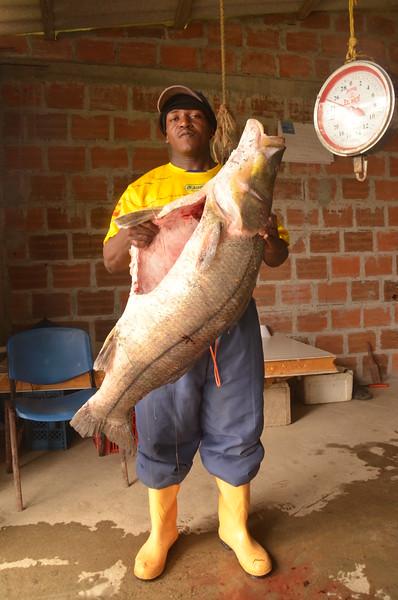 Conocemos al coordinador de la pesquera, don Armando. El Consejo Comunitario ha invertido recursos para crear un espacio en que se pueda congelar el pescado para que la pesca fresca aguante más tiempo, para poder dedicarla al consumo. Ahí también han desarrollado una fábrica de hielo que luego van vendiendo por todas las comunidades.