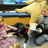 Reading to dogs :