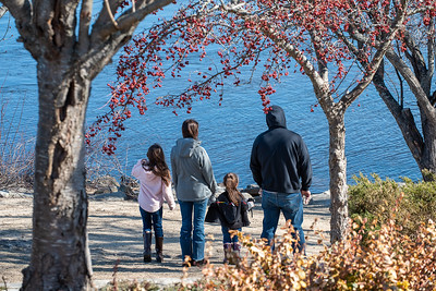 A family takes a moment to pause during their walk along the Riverwalk in Auburn Friday afternoon to watch the ducks frolic in the Androscoggin River.