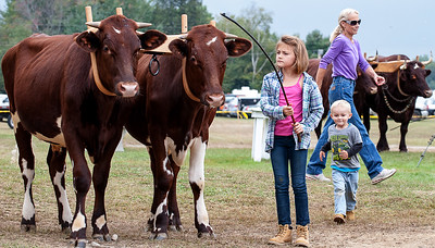 FARfarmingtonfair01P092017