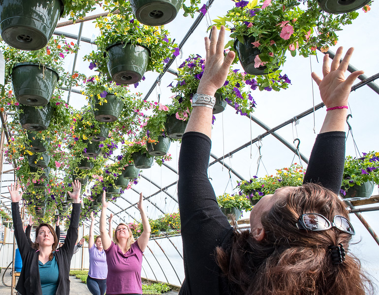 """Judi Look, right, leads the first ever Greenhouse Yoga class at Whiting Farm in Auburn Sunday morning """"to recognize Earth Day and celebrate spring with these beautiful blossoms.""""said Look.  (Russ Dillingham/Sun Journal)"""