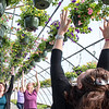 "Judi Look, right, leads the first ever Greenhouse Yoga class at Whiting Farm in Auburn Sunday morning ""to recognize Earth Day and celebrate spring with these beautiful blossoms.""said Look.  (Russ Dillingham/Sun Journal)"