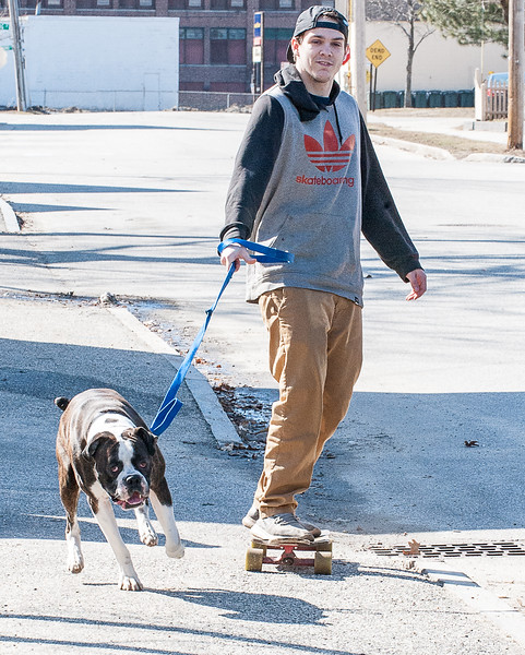 Dakota Williams, of Auburn, goes for a walk/skate around the block with his dog Milo as he pulls him down Drummond Street in Auburn Sunday afternoon.  (Russ Dillingham/Sun Journal)