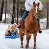 Jane Huffman rides her Quarter Horse up a trail in her yard in Poland while towing her riding partner and neighbor, Cadence Ferland.  Ferland let her mom have a turn and then gave their cousin's dog a thrill as well.