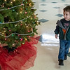 Andy Roller checks out one of several Christmas trees while holding his great grandmother's hand at the annual Christmas Fair in Rumford.