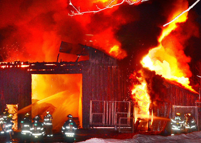 Puppies lost in barn fire