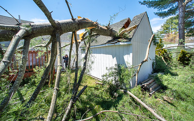 Lorna Bellegarde, background, surveys the damage to her shed and deck behind her house on Jean Street in Lewiston Tuesday morning as she waits for Aaron Trundy, from Webster Tree Services to arrive to give her an estimate for removing the limb that came down Tuesday morning during high winds.  Trundy, who owns the business, said that he is constantly having to reschedule jobs as so many emergencies like this have been coming up.