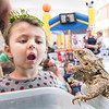 After enjoying a panckake breakfast, Hayden Smith, 4 of Auburn, mimicks a lizard on display in the cafateria at Saint Dominic Academy in Auburn Sunday morning in the kids activity room during the annual Kiwanis Club of Lewiston-Auburn Panckake Breakfast.  (Russ Dillingham/Sun Journal)