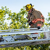 Lewiston firefighter Pvt. Pete Morrell rescues a cat stuck on the roof of an apartment building on Jefferson Street for nearly a week. Lewiston firefighters happened to be in the area training when they came to the rescue. Visit sunjournal.com to watch a video of the rescue.