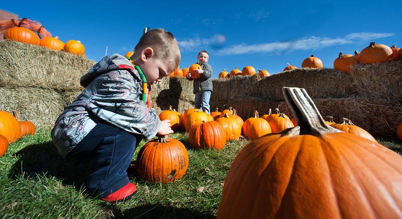 45th annual Farwell School Pumpkin Festival