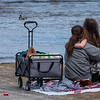 Lauren Rizzolo, of Auburn and her daughter Nova watch ducks in the Androscoggin River swim past Saturday afternoon in Auburn.