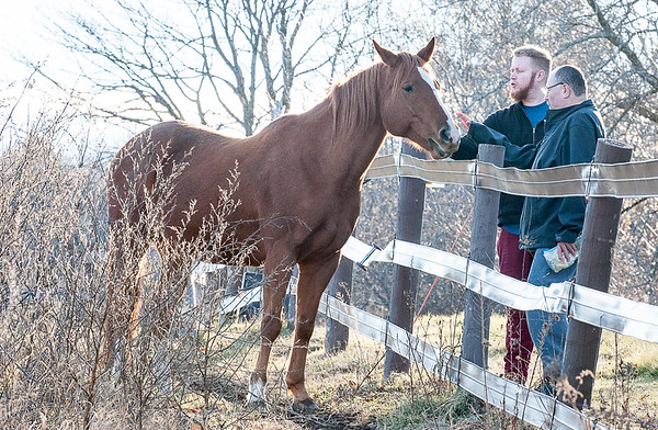 Volunteers Ray Labreque, right and John Logan spend a tender moment with one of the three horses at Rising Stars Theraupetic Farm in Turner last week.  (Russ Dillingham/Sun Journal)