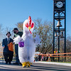 An unidentified chicken crosses the road to get some candy during the annual HELLO-WEEN event in Auburn.