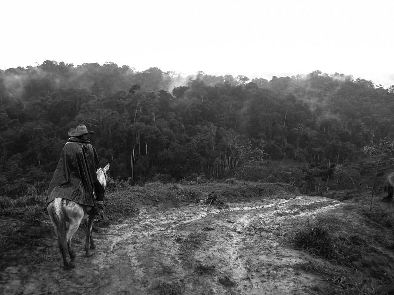 """""""Es difícil imaginar el dolor que ha sufrido este territorio cuando se camina entre la tranquilidad de la selva del nordeste antioqueño, (…) lejos del ruido de las ciudades y de las controversias políticas que flagelan la región""""."""