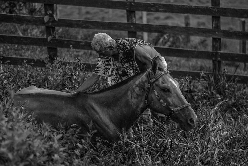 Don Macías cuidando su caballo después de una larga jornada.