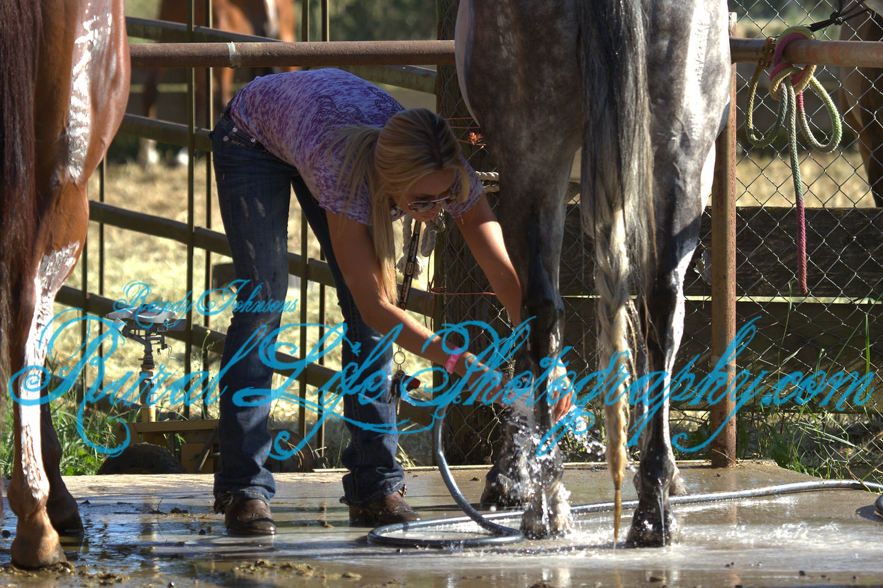 Voted CN favorite Cover 2013 .<br /> This shot of Miss Collette Jochim  after her Run in Barrels ,Vancouver 4th of July Rodeo 2013.
