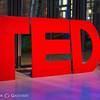 TEDx_110113007