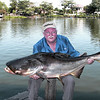 Mekong Catfish 104lb
