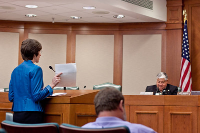"""During her testimony Louise presents a statement from the Rabbi Komerofsky at the Texas Hillel Foundation.  In it he says """"If we do not stand up for the defenseless, we are unworthy of the mercy we expect from the One who has dominion over us.  I respectfully ask you to support HB 1451."""