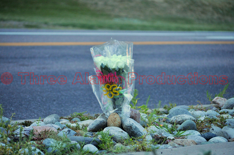 Just a few minutes after Austin Bluffs Parkway was reopened to traffic, a citizen stopped by and set-up a dozen white roses in honor of the Colorado Springs Police Officer, who died in the line of duty today.<br /> >>><br /> FUNERAL ARRANGEMENTS for OFFICER MATTHEW TYNER<br /> From Colorado Springs Police Department:<br /> Funeral Arrangements for Officer Matthew Tyner who died in the line of duty on Tuesday, July 24th are below. An updated announcement will be forwarded to the media on Monday which will advise the times road closures will be in effect. Our traffic team is being thoughtful in their planning to minimize the impact this will have on citizens. This service will be open to the public.<br /> Tuesday, July 31, 2012<br /> New Life Church<br /> 11025 Voyager Parkway<br /> Colorado Springs, Colorado 80921<br /> 2:00 p.m.<br /> Procession<br /> {W} on Interquest Parkway to I-25<br /> I-25 {S} to Uintah<br /> Uintah {E} to Nevada<br /> {S} on Nevada passing City Hall and the Police Operations Center