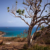 Cliff top view, SXM
