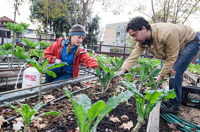 City Slicker Farms volunteers Austin Lewis (right) and Lyn Wenzel working at Union Plaza Park