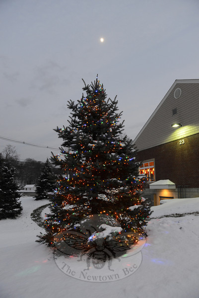 The tree at 23 Barnabas Road is lit for the holiday season. (Bobowick photo)