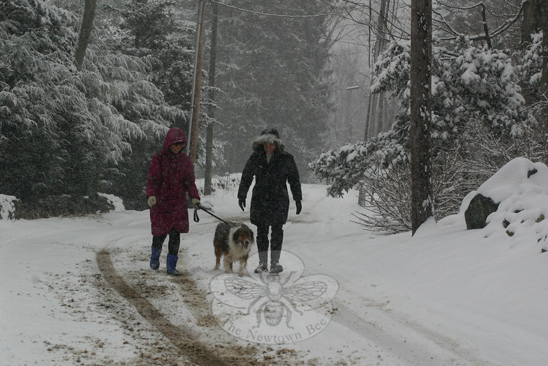 Katie Morosky, left, with Coco, and Lisa Romano took advantage of the light traffic volume on Monday to take a leisurely walk up Hall Lane during a storm that left an average of six inches of snow in town. They were among many residents who were surprised to be bundling up and treading lightly one day after Super Bowl Sunday, when temperatures reached a balmy 50 degrees. By Wednesday, winter blanketed Newtown with another covering of snow. The second storm was accompanied by freezing rain, however, making it more difficult to dig out from the precipitation. (Hicks photo)