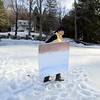 Artist Pat Barkman walks across Taunton Lake's slushy surface on March 11, carrying a canvas of the scene she sees across the water from her house, background. (Bobowick photo)