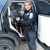 Police Canine Officer Felicia Figol attends to Saint, the police department's German shepherd, who is sitting in a specialized police-marked Ford Explorer SUV that is used for dog transport. Saint has started his patrol duties. He replaces police dog Baro, who was retired from service last year and later died. (Gorosko photo)