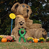 Those tracking the area's bear sightings can add this hay bale bear to their list. This bear makes an annual appearance outside Dr Joshua E. Baum's office in the fall. This year the giant teddy bear is wearing a Newtown's Angels green ribbon. The bear, with its black hubcap-sized button eyes and sea-sonal scarf of colorful leaves, has settled in among the potted mums and pumpkins to watch traffic at the busy intersection of Church Hill Road and Queen Street. (Bobowick photo)