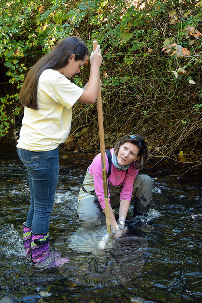 Kit Kechejian, a member of the Candlewood Valley Chapter of Trout Unlimited, right, gathers samples of macroinvertebrates from beneath rocks in a stream near the confluence of Tom's Brook and the Pootatuck River, as Allison Kellogg holds the handle of a net into which the samples are placed. (Gorosko photo)