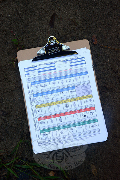 To aid them in identifying a variety of macroinvertebrates found in streams, volunteers in the riverine bioassessment program use field data sheets with drawings of the tiny animals they may encounter while collecting samples of aquatic life. (Gorosko photo)