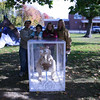 "From left are Mark Forlenzo, Newtown Middle School student Teresa Forlenzo, NMS student Rachel O'Grady, and Christine O'Grady with the students' entry, ""Scrat"" from the movie Ice Age, in this year's My Favorite Scarecrow Contest. The girls said they wanted to create Scrat because they wanted a recognizable figure for younger kids, and they gave him an acorn, which he constantly tries to get a hold of in the movie, to symbolize never giving up. (Silber photo)"