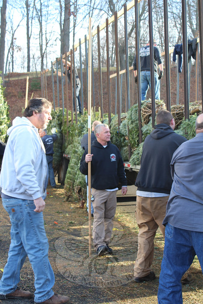 Christmas Trees Sale Chairman Mike Burton was one of two people measuring trees as they came off the truck for this year's trees sale. Customers were at the main station as soon as the fundraiser opened on November 27. (Hicks photo)