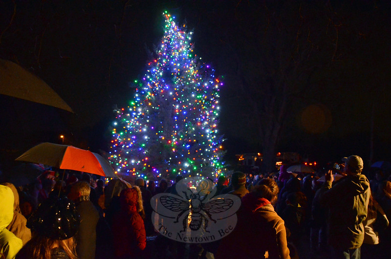 A crowd gathered around the larger tree at Ram Pasture on Friday, December 5, for the 30th Annual Ram Pasture Tree Lighting event. (Hallabeck photo)