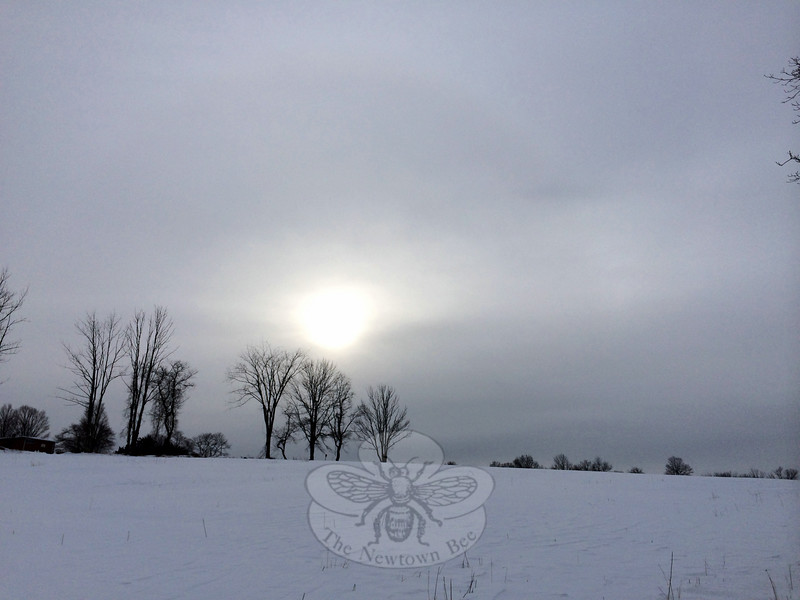 A weak winter sun breaks through the still overcast sky at Holcombe Hill Wildlife Preserve off of Great Hill Road Tuesday afternoon, January 27. Fields of snow at the Newtown Forest Association property were sculpted to a smooth finish by the steady winds of Storm Juno, leaving only tall stalks of last summer's grasses exposed. (Crevier photo)