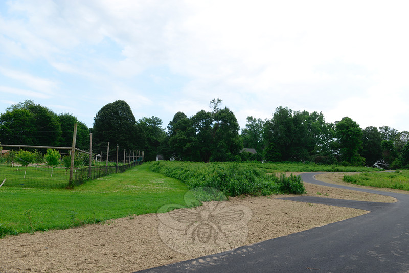 Part of the new trail, visible at the lower and right-hand side, passes the community and volunteer-based Victory Garden, fenced in at left. The garden harvest is donated to the town's food pantries. (Bobowick photo)