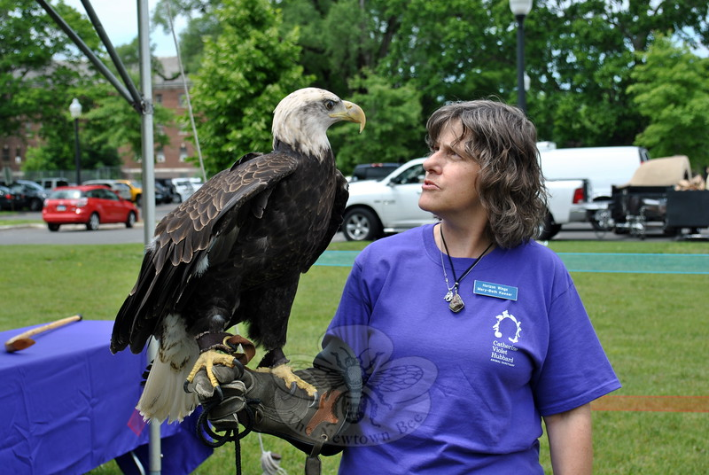 Mary Beth Kaeser, founder of Horizon Wings Raptor Rehabilitation & Education in Ashford, Conn., is eye to eye with a bald eagle. (Crevier photo)