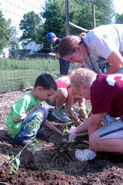 Sandy Hook Elementary School Math/Science Specialist Kris Feda bent over Cole Sgagliardich, right, and Aaron Fung, to help oversee planting efforts at the Victory Garden in Fairfield Hills on Wednesday, June 3. (Hallabeck photo)