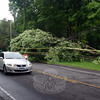 A vehicle travels north on Berkshire Road around 6:50 pm Wednesday, past the property at 82 Berkshire Road. Sandy Hook firefighters responded to that location when a tree fell on wires there, which also blocked the southbound travel lane for hours. (Hicks photo)