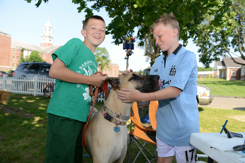 Spending a few minutes with a Great Dane are brothers Aiden and JP Ford during opening day of the Newtown Farmers Market at Fairfield Hills.   (Bobowick photo)