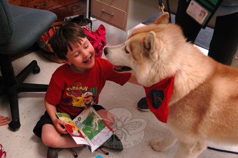 Hawley Elementary School kindergartener Henry Baraw met Ringo, a therapy dog that visited the school on Wednesday, May 13, as part of a visit to the school by Charlotte's Litter and Newtown Kindness volunteers. (Hallabeck photo)